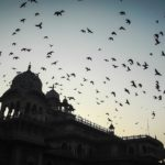 Top 5 Places to Visit Near Jaipur with DSLR