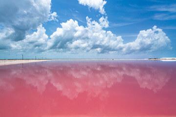 Pink lake 2