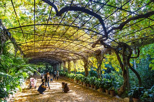 Jardin Botanico de Vinales - Botanical Garden